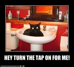 HEY TURN THE TAP ON FOR ME!