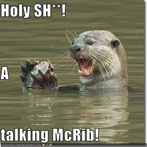 Holy SH**! A  talking McRib!