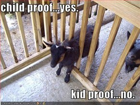 child proof...yes.  kid proof...no.