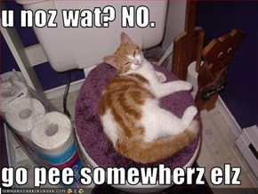 u noz wat? NO.  go pee somewherz elz