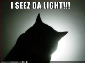 I SEEZ DA LIGHT!!!