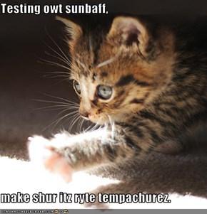 Testing owt sunbaff,  make shur itz ryte tempachurez.