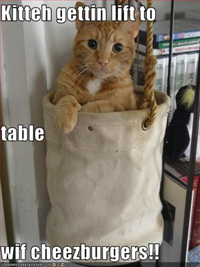 Kitteh gettin lift to table wif cheezburgers!!