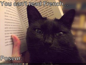 You can't read French...  Poseur.