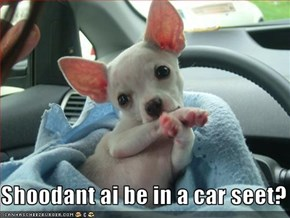 Shoodant ai be in a car seet?