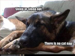 Sleep or sleep not.