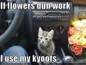 If flowers dun work  I use my kyoots