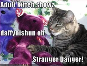 Adult kitteh showz daffynishun ob Stranger Danger!
