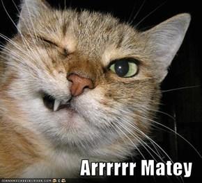 Arrrrrr Matey
