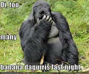 Oi, too many banana daquiris last night.
