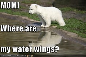 MOM! Where are my water wings?