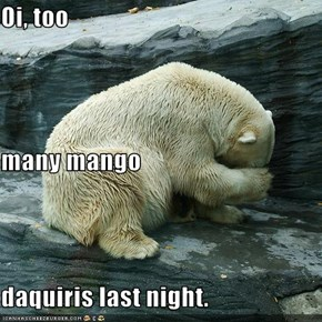 Oi, too many mango daquiris last night.