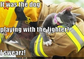 It was the dog playing with the lighter! I swearz!
