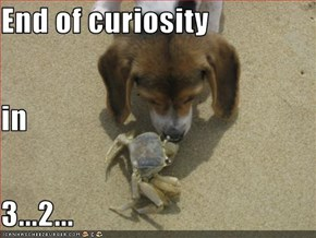 End of curiosity in  3...2...