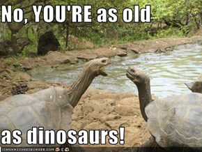 No, YOU'RE as old  as dinosaurs!