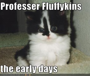 Professer Fluffykins  the early days
