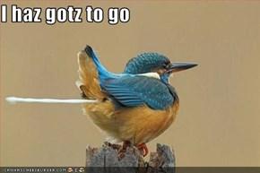 I haz gotz to go