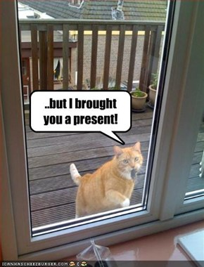 ..but I brought you a present!