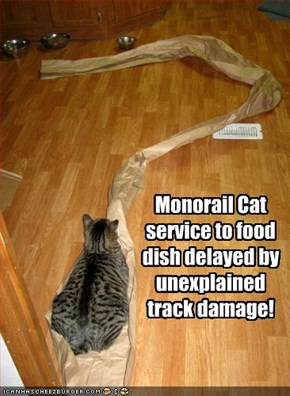 Monorail Cat service to food dish delayed by unexplained track damage!