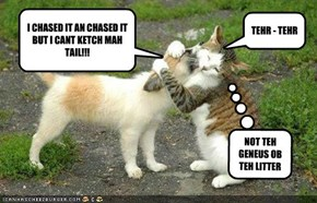 I CHASED IT AN CHASED IT BUT I CANT KETCH MAH TAIL!!!