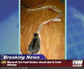 Breaking News - Monorail Cat Food Station closed due to track damage