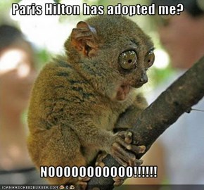 Paris Hilton has adopted me?  NOOOOOOOOOOO!!!!!!