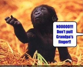 NOOOOO!!! Don't pull Grandpa's finger!!