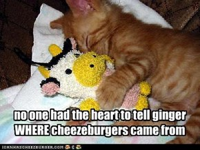 no one had the heart to tell ginger WHERE cheezeburgers came from