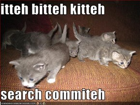 itteh bitteh kitteh  search commiteh
