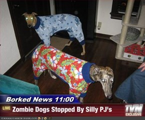 Borked News 11:00 - Zombie Dogs Stopped By Silly PJ's
