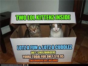 TWO LOL KITTEHZ INSIDE
