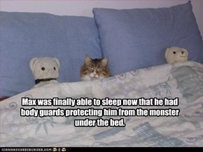 Max was finally able to sleep now that he had body guards protecting him from the monster under the bed.