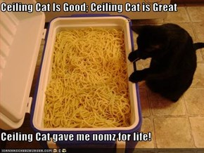 Ceiling Cat Is Good; Ceiling Cat is Great  Ceiling Cat gave me nomz for life!