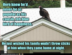 The turkey vulture's lament...