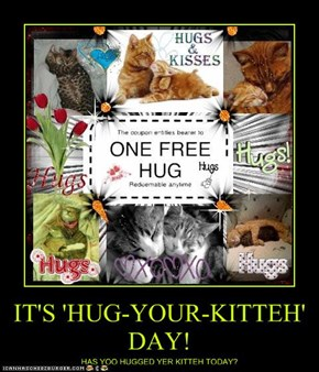 IT'S 'HUG-YOUR-KITTEH' DAY!
