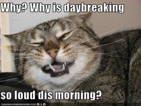 Why? Why is daybreaking  so loud dis morning?