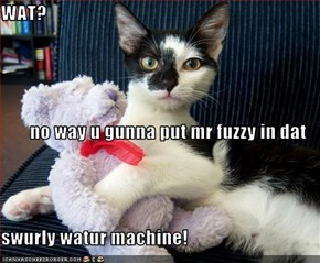WAT? no way u gunna put mr fuzzy in dat  swurly watur machine!