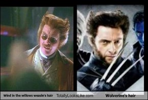 Wind in the willows weasle's hair Totally Looks Like Wolverine's hair