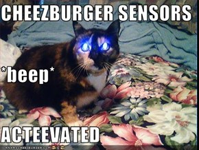 CHEEZBURGER SENSORS *beep* ACTEEVATED