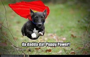 da dadda da!  Puppy Power!