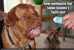"new toothpaste has failed Stanley's  ""taste test"""