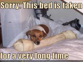 Sorry. This bed is taken  for a very long time