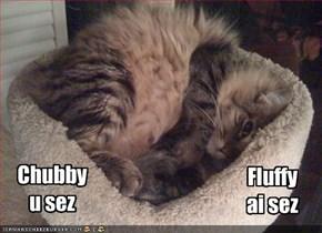 Chubby u sez