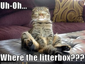 Uh-Oh...  Where the litterbox???
