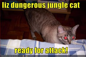 Iiz dungerous jungle cat  ready for attack!