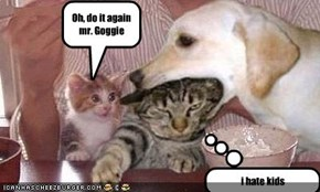 Oh, do it again mr. Goggie