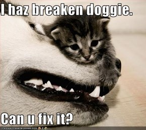 I haz breaken doggie.  Can u fix it?