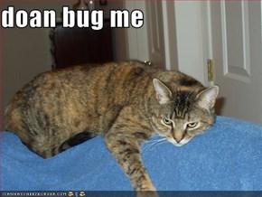 doan bug me