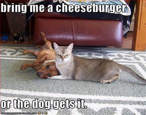 bring me a cheeseburger  or the dog gets it.