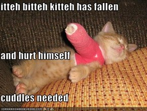 itteh bitteh kitteh has fallen  and hurt himself cuddles needed